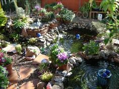 a pond into a pond...into another pond..... Alan would kill me. haha