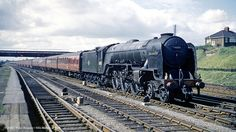 c.08/1962 - York. | Best viewed 'Original' size. If any loco… | Flickr Electric Locomotive, Diesel Locomotive, Steam Locomotive, Steam Trains Uk, Steam Railway, Car Carrier, Train Art, British Rail, Old Trains
