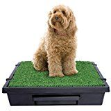 Amazon.com : Klean Paws Indoor Dog Potty, No Torn Potty Pads! Keep Paws Dry! Protect Floors! Easy Cleanup! Save Money On Pads! For Puppies, Small Dogs & Cats, #1 Puppy Pad Holder Tray, 100% Satisfaction Guarantee : Pet Supplies