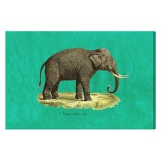 Elephant I Canvas Print, Oliver Gal