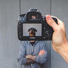 Kreative Fotografie Ideen mit Hund Creative photography ideas with dog –