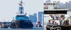 Working Harbor: News