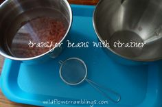 Transfer beans with strainer (practical life area)
