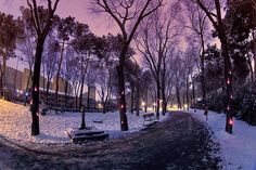 Winter wonderland - makes me want to bundle up and take a walk right here in this photo!