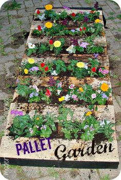 Modern yet Old-Fashioned: Pallet Garden