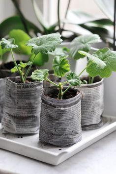 Krantenpapier kan je overal voor hergebruiken, dus ook voor het maken van kweekbakjes voor plantjes of kruiden. Benodigdheden: Krantenpapier Een blik (bijvoorbeeld een soepblik) Lijm of plakband Stap 1. Vouw een krant een aantal keer...