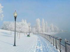 Elizabeth Park Trenton Michigan