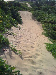 En las dunas de Isabela :)    Feels good to be on top of a big pile of sand