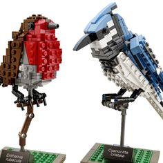 Thomas Poulsom's LEGO Birds Available as an Official LEGO Set