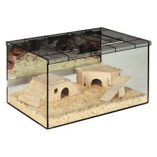 Large Hamster Glass Cage Spacious Terrarium Gerbil Small Pet Home Deep Tray Pet Ebay Sales Value4moneydeals Cool Hamster Cages Small Pets Hamster Cage