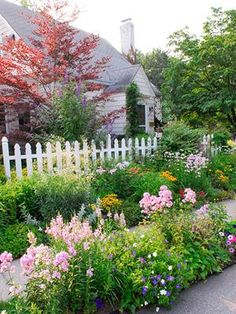 planting a small slope | garden design for birds, hummingbirds, and butterflies. Planting ...
