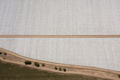Strawberry Fields, Southern California by Alex MacLean - aerial photographer www.alexmaclean.com/