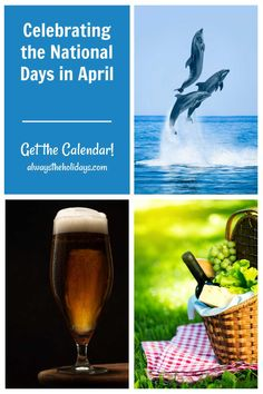 April is a month full of interesting national days. From National Dolphin Day to National Beer Day and National Picnic Day, there is a day for everyone to celebrate. Head to Always the Holidays to get your free printable calendar. #nationaldays #calendar April National Days, National Beer Day, National Day Calendar, Free Printable Calendar, Free Printables, Days Of The Year, Picnic, Activities, Celebrities