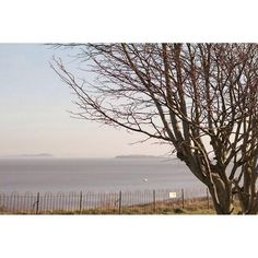 Did you see some of my #Penarth #Photography on @wow247cardiff yesterday? … http://ift.tt/1IkHNQu