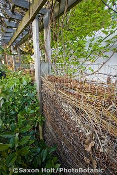 Another, often underutilized component of sustainable gardening, is to minimize off site yard waste. By making a compost fence, a wall of small branches decomposing as it ages, Jennifer Carlson takes full advantage of her small space. Seattle Washington. Saxon Holt Photography/PhotoBotanic Garden Library