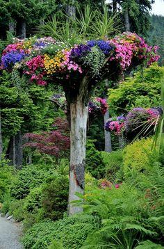 Image Via: Colour My World