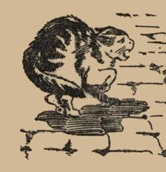 Fierce Little Kitty / This drawing was the work of Carll B. Williams who died in 1928. It appeared in Billy Whisker's Travels.
