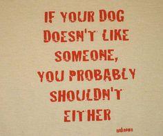 Trust doggie.