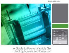 Electrophoresis Guide, Interactive PDF, Rev B -  http://www.bio-rad.com/webroot/web/pdf/lsr/literature/Bulletin_6040.pdf