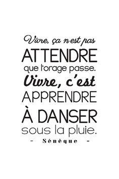 Phrases Sur Le Sourire destiné les plus beaux proverbes à partager : vente stickers / 24345