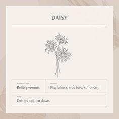 Small Daisy Tattoo, Daisy Flower Tattoos, Daisies Tattoo, Harry Potter Tattoos, Tante Tattoo, Floral Tattoo Design, Daisy Tattoo Designs, Disney Tattoos, Resilience Tattoo