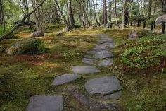 Kuvahaun tulos haulle kivipolku