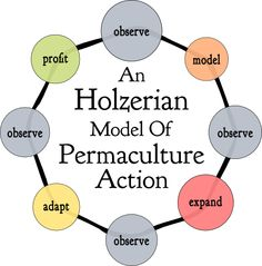 Sepp Holzer's model of permaculture is also called farming in nature. What I like about his methods is he gets his animals to work for him.