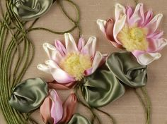 Water Lilies close-up