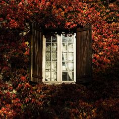 French Windows, France, French