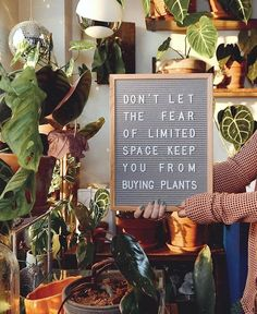 Plants quotes – Houseplant plant quotes saying 📷 plant communitytalkplantytomeplantspothouseplantheadquartersfoliageplantsansevieriasnak – Best Garden Plants And Planting Buy Plants, Garden Plants, Indoor Garden, Indoor Plants, Plants Quotes, Plants Are Friends, Garden Quotes, Plant Care, Plant Decor