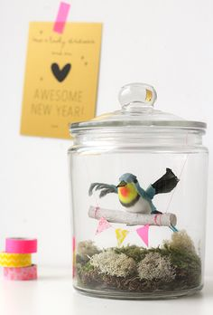 bird in a jar DIY