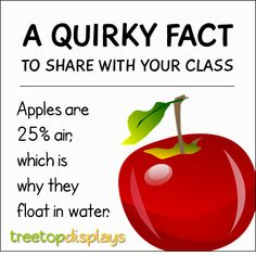 Posted to FB A quirky fact about apples to share with your class - from Treetop Displays. Visit our TpT store for printable resources by clicking on the provided links. Designed by teachers for Pre-Kindergarten to Grade. Fun Facts For Kids, Fun Facts About Animals, Wow Facts, Wtf Fun Facts, Classroom Fun, Classroom Resources, Fun Learning, Teaching Kids, Fall Facts