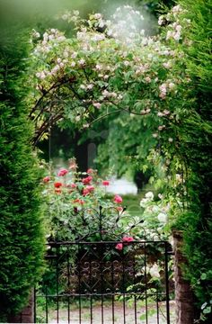 Charming English cottage garden gate leading into the garden..landscaping ideas