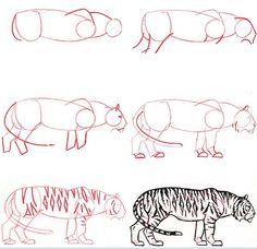 dibujar animales paso a paso - Buscar con Google