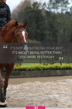 Mindset is everything when it comes to riding and I just love this quote and focusing on making small incremental improvements each and every day. Equine Quotes, Equestrian Quotes, Equestrian Outfits, Equestrian Fashion, Equestrian Problems, Equestrian Style, Inspirational Horse Quotes, Horse Riding Quotes, Funny Horses