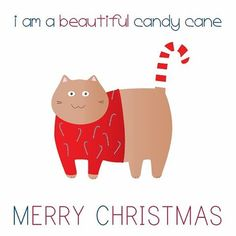 Yes. Yes you are. ❤️🎄🎅🏻❄️🎁🐈 #candycane #merrychristmas #froheweihnachten #cat