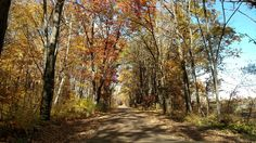 Tunnel Road, Pine County, MN