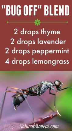 This insect repellant blend will keep bugs and insects at bay.  Lots of other diffuser blends here too.