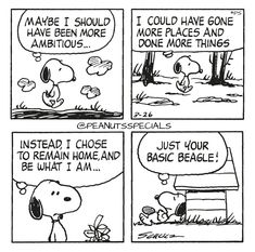 First Appearance: March 26th, 1980 #peanutsspecials #ps #pnts #schulz #snoopy #maybe #ambitious #places #things #instead #chose #home #basic #beagle www.peanutsspecials.com