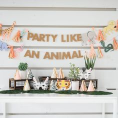 Everything you need to throw the perfect party for your little party animal! 2nd Birthday Party For Girl, Animal Themed Birthday Party, Party Animal Theme, Boy Birthday Themes, Kids Animal Party, Party Animals, 4th Birthday, Birthday Ideas, Safari Party