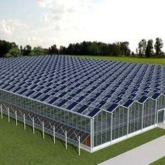 Hydroponic Farming, Hydroponics, Solar Energy, Solar Power, Farming Technology, Commercial Greenhouse, Solar Projects, Passive Solar, Solar House
