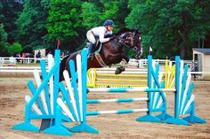 This incredible jumper is for sale on Equine.com! Be sure to check her out!