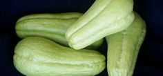 Clique AQUI para saber mais... Pickles, Cucumber, Diabetes, Vegetables, Homemade Recipe, Health Tips, Recipes, Nice, Pretty