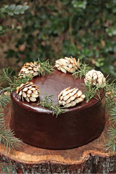 After baking your favorite chocolate cake and dressing it with your favorite frosting or ganache, top it with these beautiful nature-inspired garnishes. A chocolate center holds together thin slivers of almonds that imitate pinecone scales.