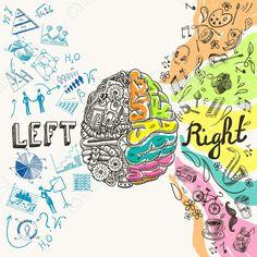 El Cerebro Izquierdo Hemisferios Creativos Analíticos Y Derecha Concepto Boceto Ilustración Vectorial Ilustraciones…