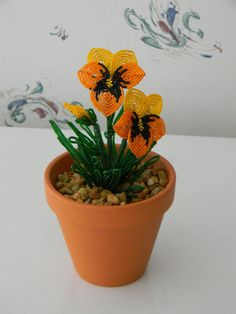 french beaded flower orange potted pansy plant