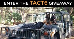 #Win TACT6 Giveaway #2 http://tact6.com/giveaways/tact6-giveaway-2/?lucky=1455 via @Trippmehew 1/10
