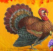 Short Turkey Songs - Turkey Poems for Recitation - Kid Thanksgiving Turkey songs Turkey Poem, Turkey Songs, Thanksgiving Preschool, Thanksgiving Turkey, Tender Meat, Best Turkey, Train Up A Child, Give Thanks, Preschool Ideas