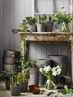 MANDEL krukor finns i storlekarna 24 och 32 cm. Ikea Plants, Indoor Plants, Ikea Outdoor, Outdoor Living, Garden Shop, Home And Garden, Garden Power Tools, Garden Shelves, Pot Plante