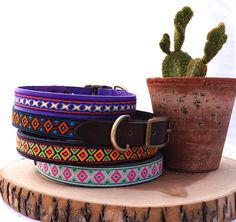 Tribal dog collars by Squirrel and Bird